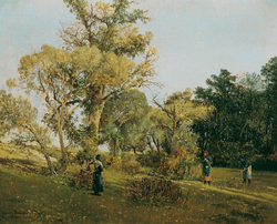 On the Ligethi Puszta