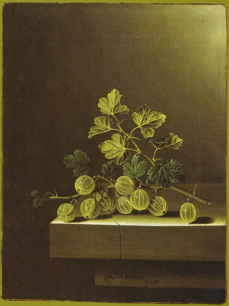 Spray of Green Gooseberries on a Stone Plinth