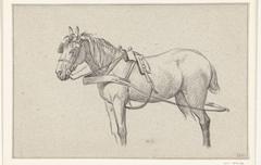 Staand ingespannen paard, naar links