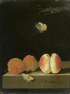 Still life with peach and two apricots
