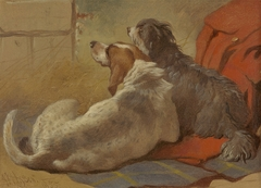 A Hound and a Bearded Collie seated on a Hunting Coat