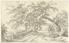 Bomen langs weg bij Broekhuizen in Drenthe