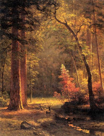 Dogwood Albert Bierstadt Artwork On Useum