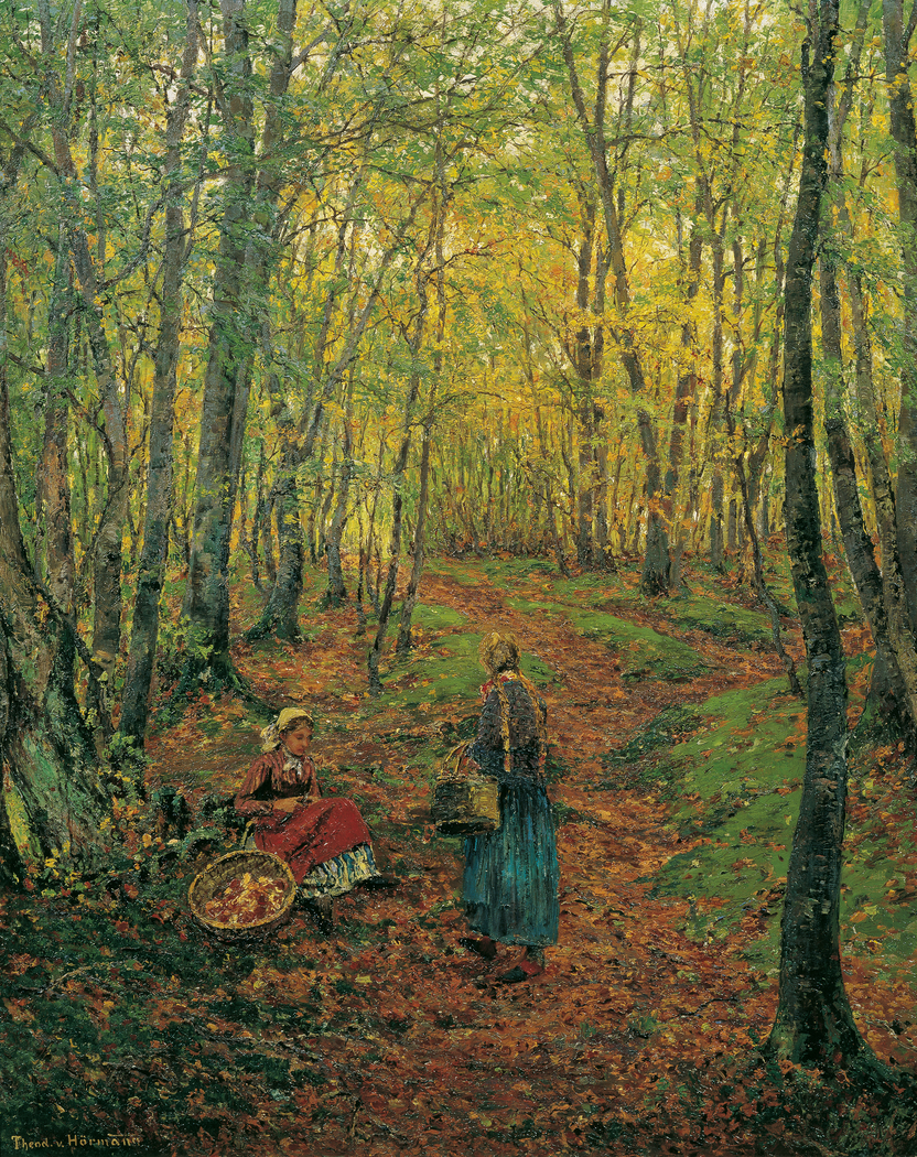 Inner Forest with Mushroom Searching Girls