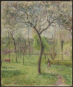 Landscape (Orchard)