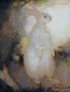 Lapin blanc, debout