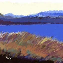 Marsh near Southport