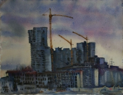 Nest of the elevating cranes