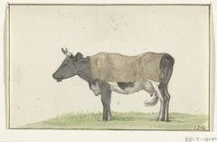 Staande koe met deken, naar links