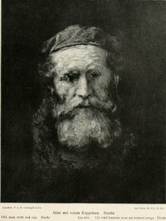 Study of the head of a bearded old man in red cap