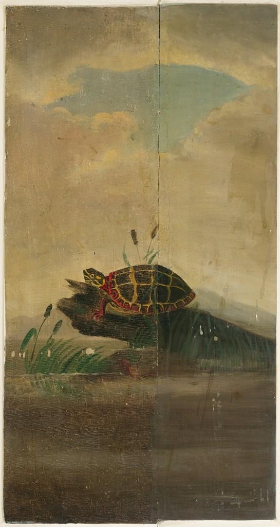 Tortoise Resting on a Log