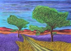 Two Oak Trees In Field Of Lavender