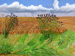 Wheatfields off Woldgate
