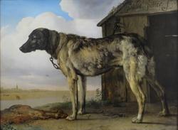 Wolf-Hound