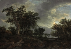 Wooded Landscape with a Pond