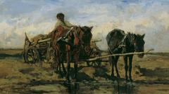 Hungarian farmer's wagon on the water