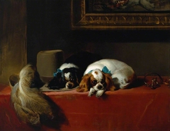 King Charles Spaniels ('The Cavalier's Pets')