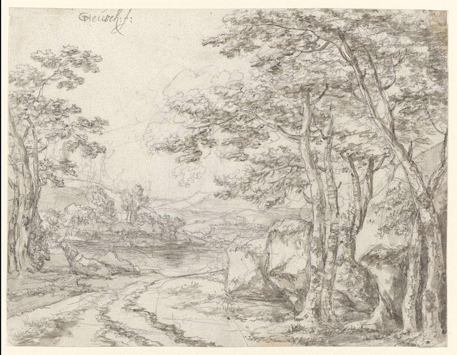 Landschap met een weg langs bomen