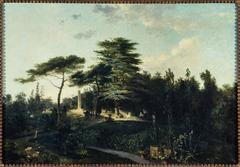 Le cèdre du Liban, au jardin des Plantes