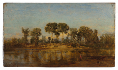 Le Rhône entre Arles et Avignon