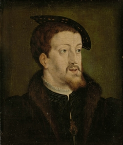 Portrait of Charles V, Holy Roman Emperor