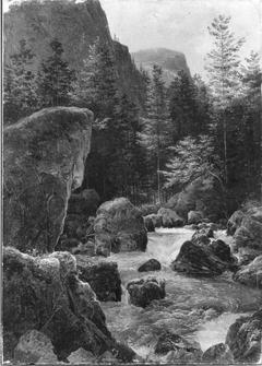 Waldbach Strubb bei Hallstatt